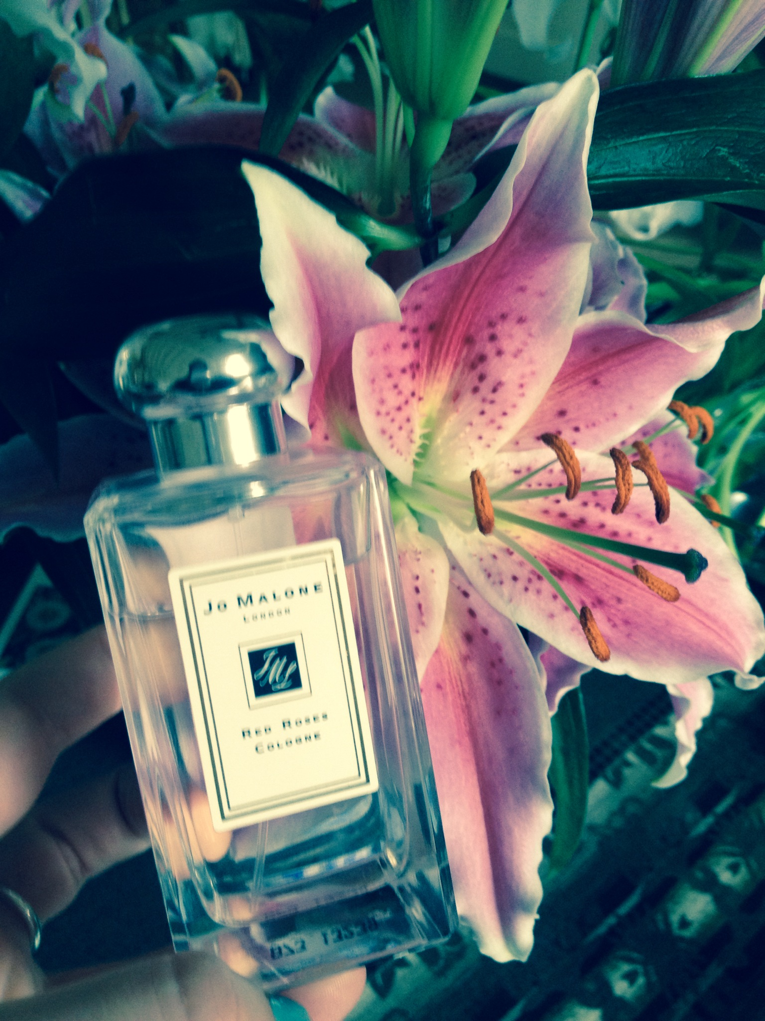Jo Malone Rose Fragrance (Lily Optional)